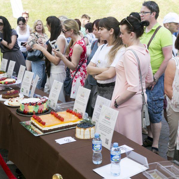 100 tortu Lietuvai_7110